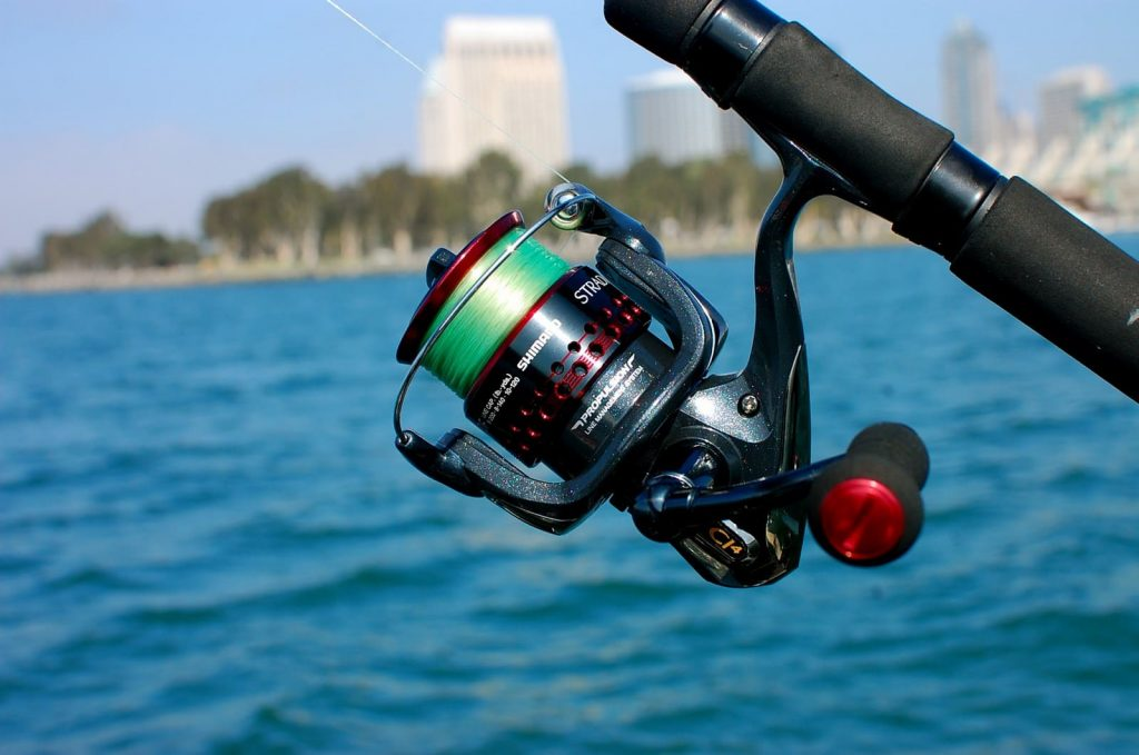 Top 10 Saltwater Spinning Reels for Inshore and Offshore Fishing