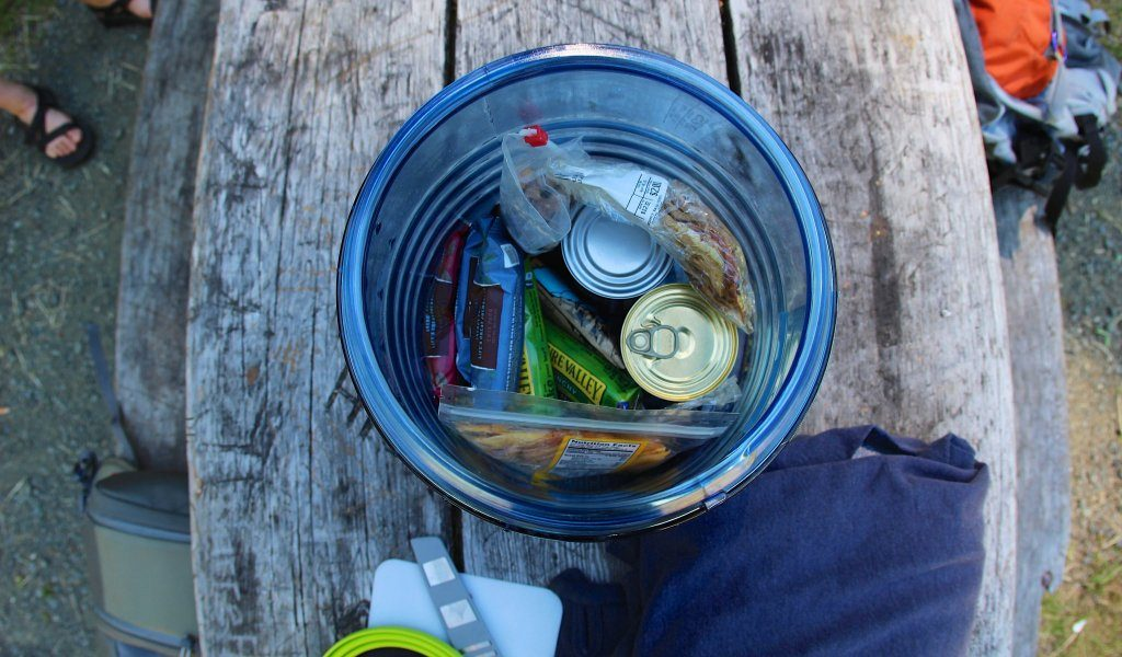 5 Sturdiest Bear Canisters to Keep You and Your Food Away from Attacks