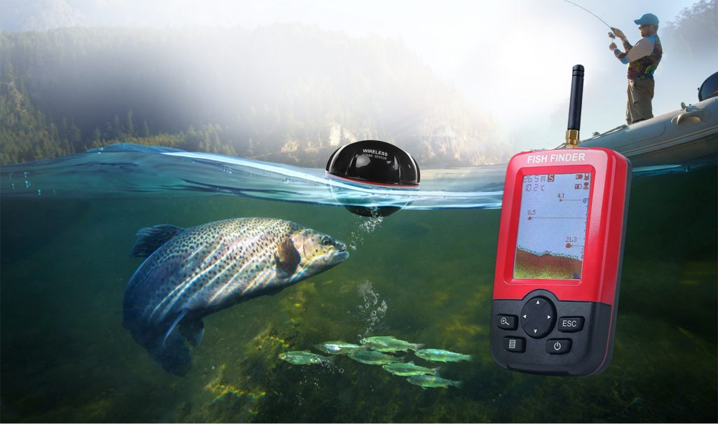 Fish finder with vertical display