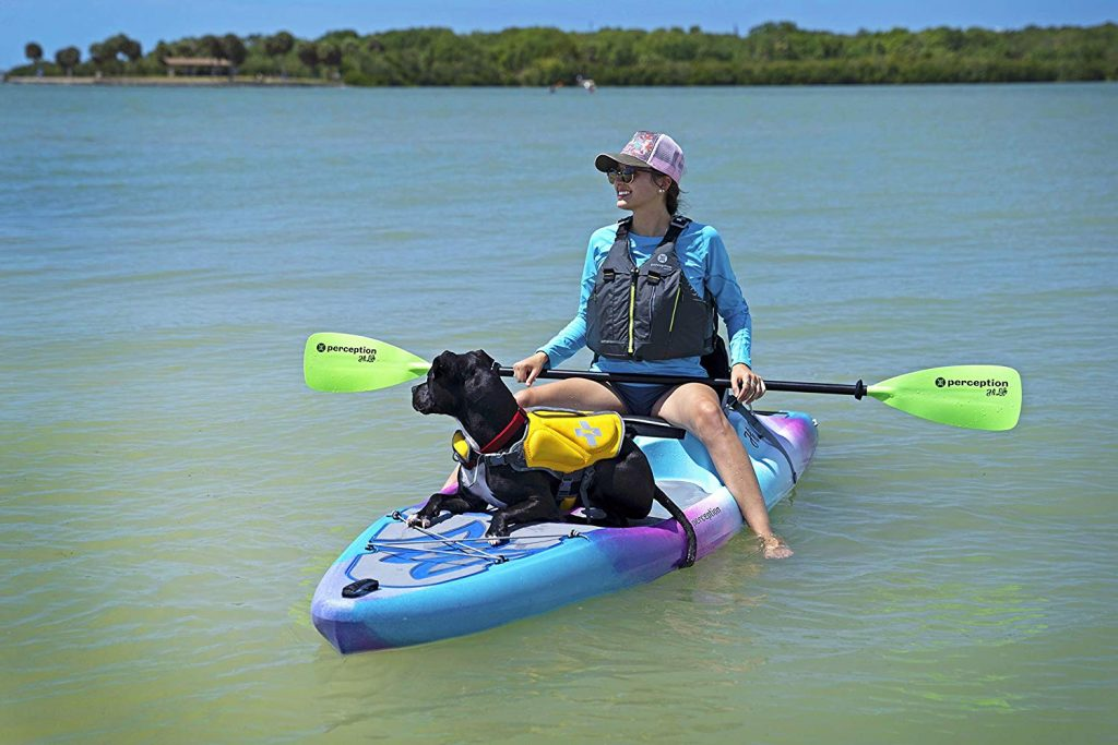 Top 8 Kayaks for Dogs to Take Your Best Friend on Water With You