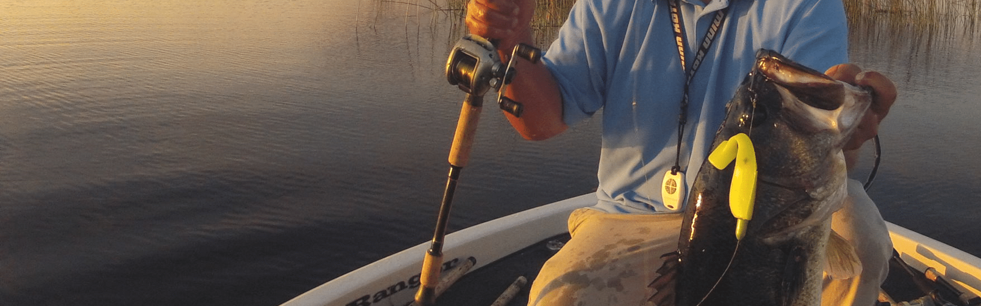 Best Swimbait Rods Reviewed in Detail
