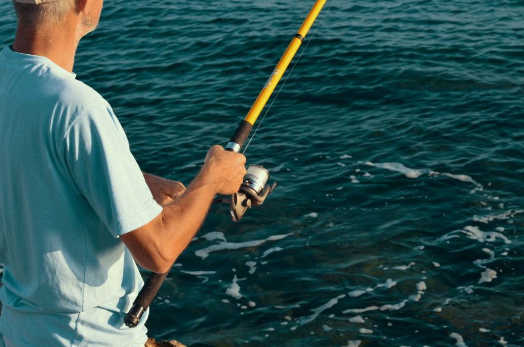 10 Best Saltwater Fishing Rods for an Awesome Fishing Experience