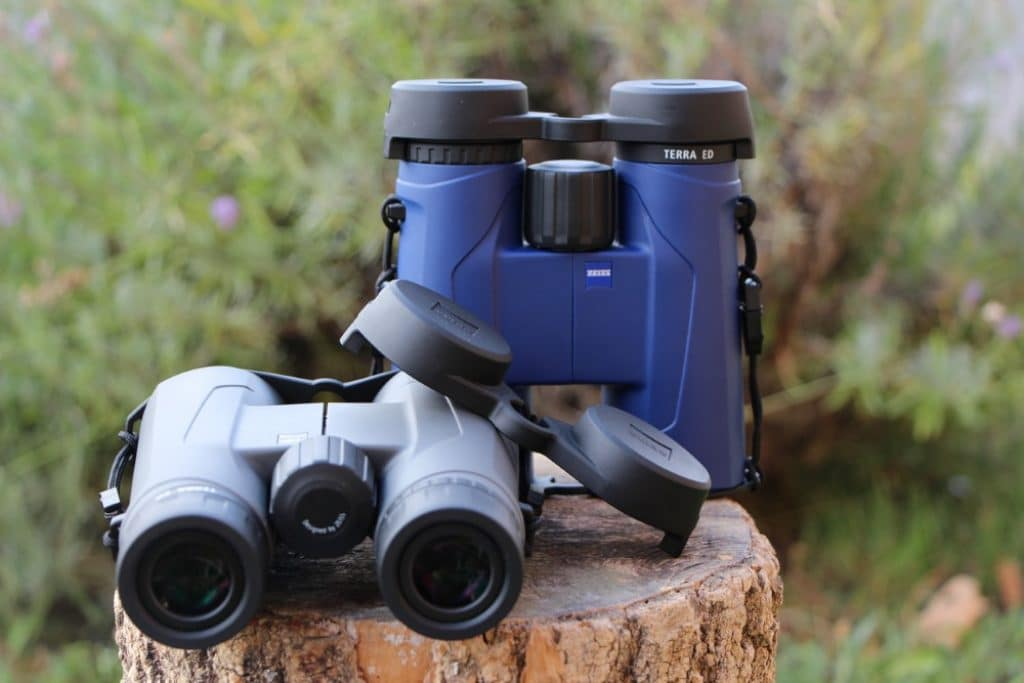 8 Awesome Compact Binoculars to Boost Your Outdoor Experience
