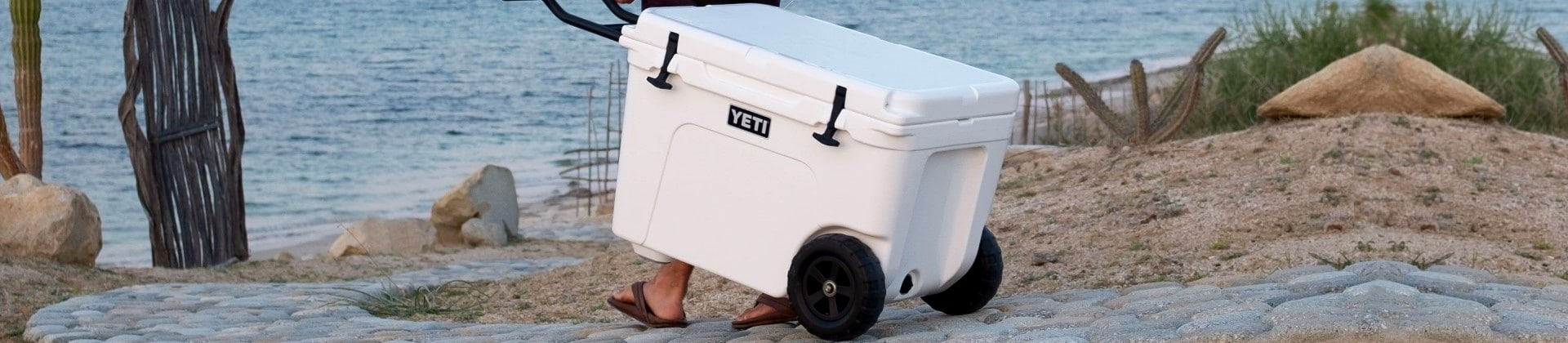 Best Coolers with Wheels Reviewed in Detail