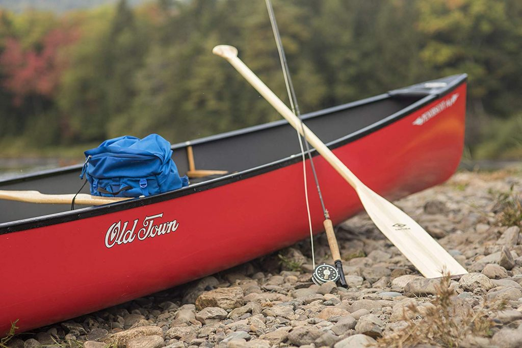 10 Fantastic Canoe Paddles - Get Maximum Control Over the Situation!