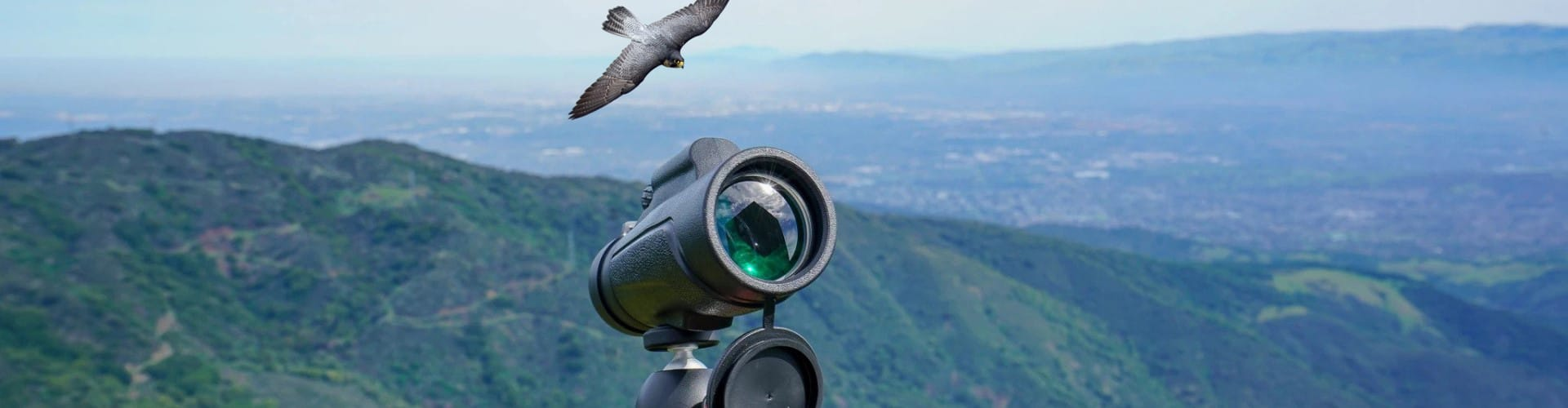 Best Monoculars for Bird Watching – Top Rated