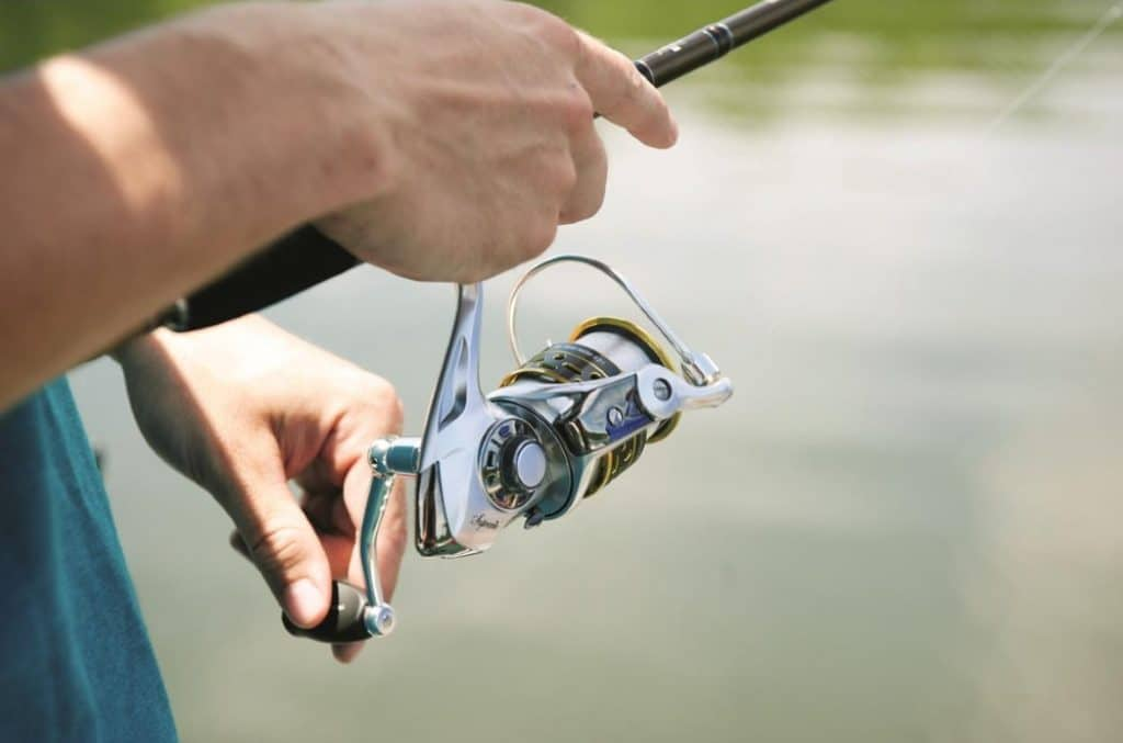 10 Best Spinning Reels - Hunting for Different Types of Fish!