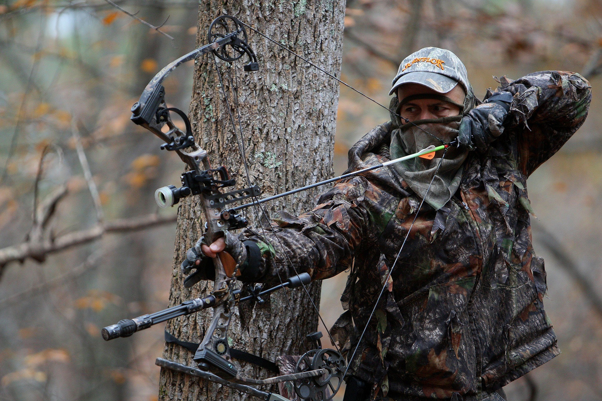 Best Compound Bows Top Rated and Reviewed
