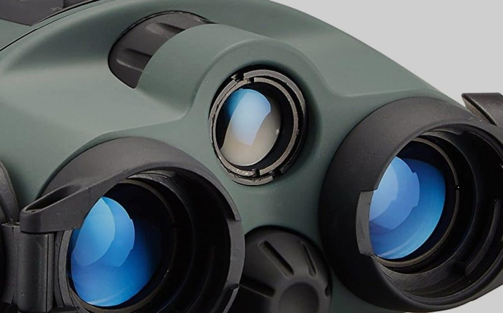 10 Best Night Vision Binoculars to Help You Out on Your Nocturnal Adventures