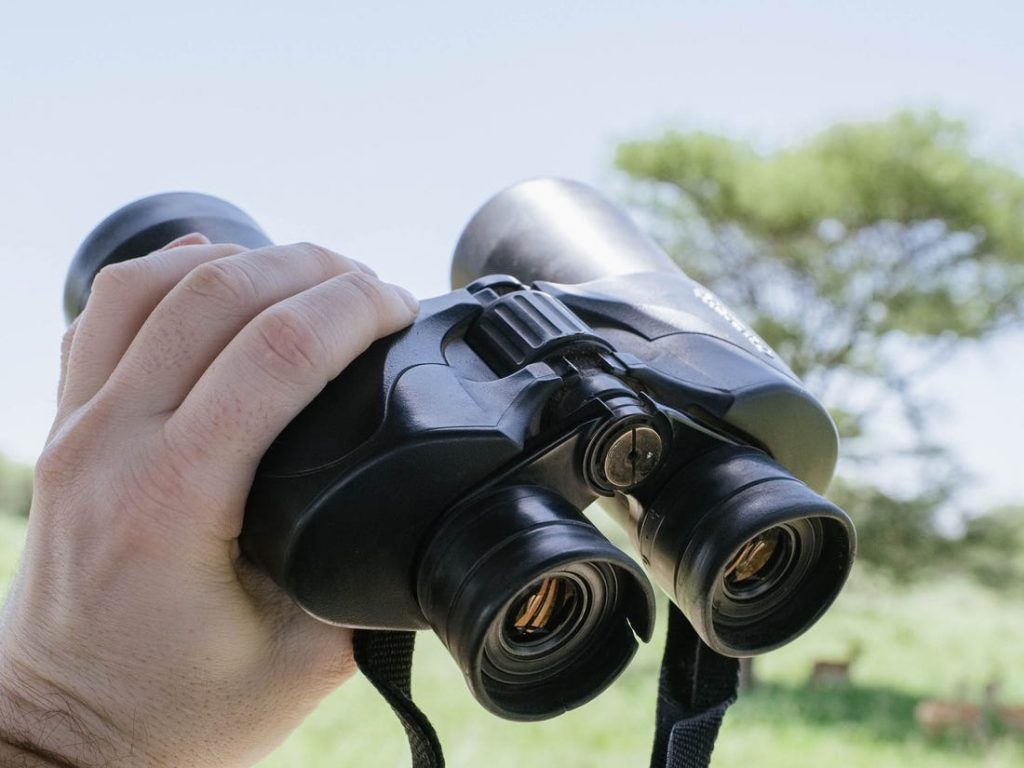 10 Best Binoculars for Safari – Enjoy Watching Wildlife!