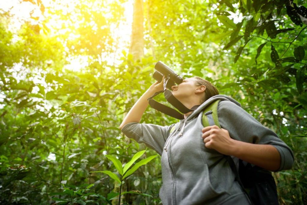 5 Great Binoculars for Wildlife Viewing - Reviews and Buying Guide