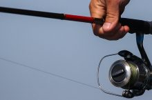 6 Best Catfish Rods to Catch the Biggest Fish in Your Life