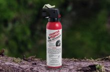 6 Most Effective Bear Sprays – Make Your Camping Safer