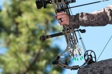 10 Best Bow Stabilizers for the Most Accurate Shots