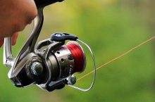 12 Best Fishing Reels To Make Fishing More Fun and Productive for You