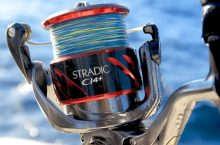 10 Best Spinning Reels – Hunting for Different Types of Fish!