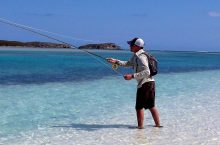 5 Best Surf Fishing Rods – Pick a Rod for Your Style and Goals